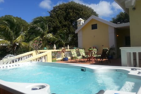 LUXURY, MINUTES TO CITY, BEACH, RESTAURANTS & MORE - Frederiksted