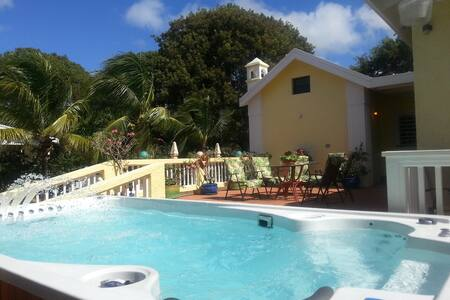 4 Bedrm. 6 Bathrm.House / Hydropool - Frederiksted