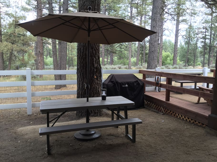 Your private patio with picnic table and barbecue.