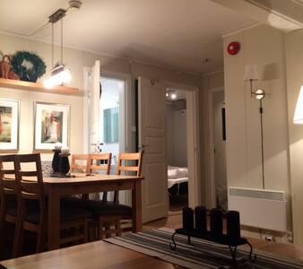 Hovden Nystøyl ferieleilighet - Hovden - Lägenhet