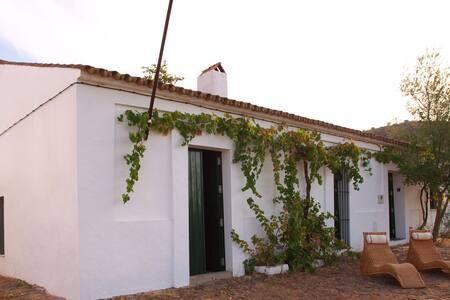 House of Engineer, Low Guadiana - El Granado