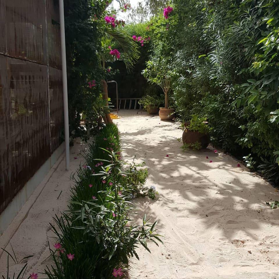 Jardin avec sable fin. Une mini plage.