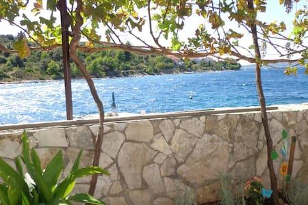 Villa Sea Paradise - Drvenik Veli - Drvenik Veli