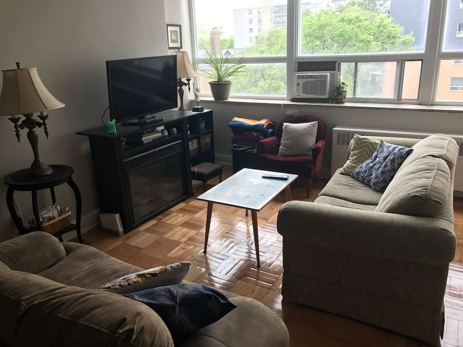 Living room 2 with pullout couch