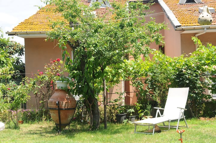 House with a garden in Heybeliada