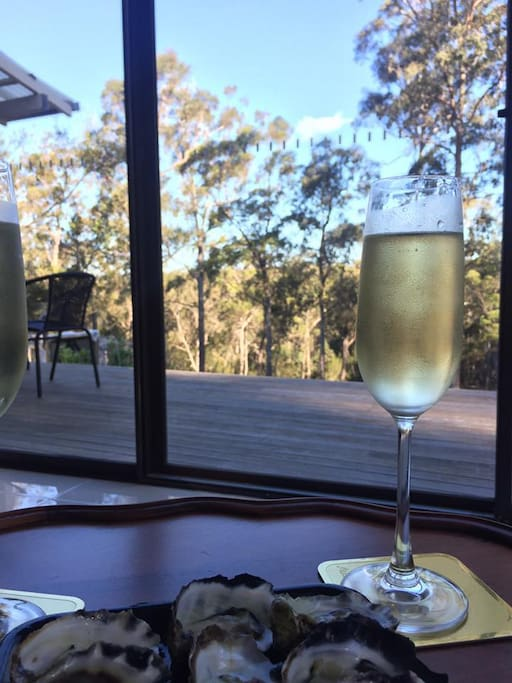 You can enjoy local Wine and oysters on your own balcony overlooking the dam