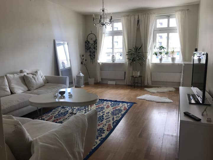 Private two room apartment in the city center