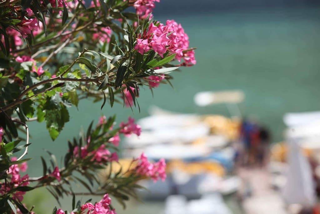 Λίμνη Κουρνά( κορύσσια) η οποία έχει ενταχθεί στη ζώνη NATURA.  Αγαπημένος προορισμός. Η θάλασσα βρίσκεται μόλις  7 λεπτά με το αυτοκίνητο