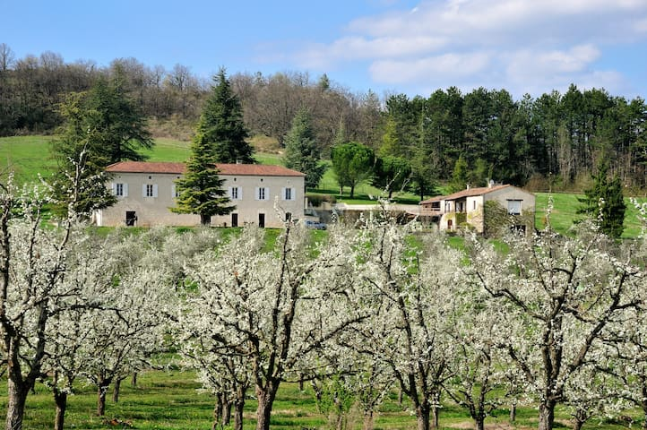 Domaine Lapeze Bed & Breakfast - Montcuq