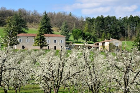 Domaine Lapeze Bed & Breakfast - Montcuq - Bed & Breakfast