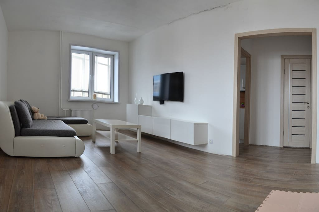 room with sofa bed and TV