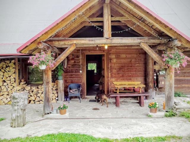 Cottage pod Jaworem - Wisła - กระท่อมบนภูเขา