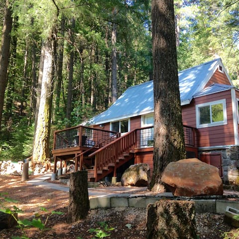Shasta Retreat Cabin & Mini Cabin - Dunsmuir - Hytte