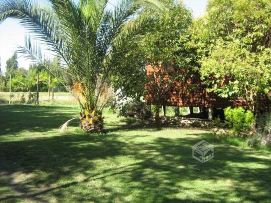 isla de maipo chat rooms Choose from over 692 boutique hotels in cajon del maipo with great savings hotwire hotels rooms adults isla de maipo hotels.