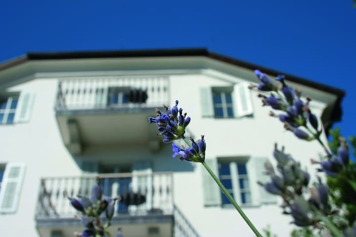 Frühmesserhaus - Algund - Flat