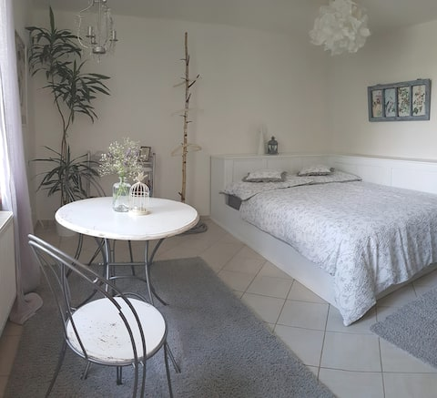 Lovely doubleroom with river view close to Prague