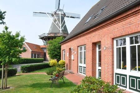 ... mit Blick auf die Mühle