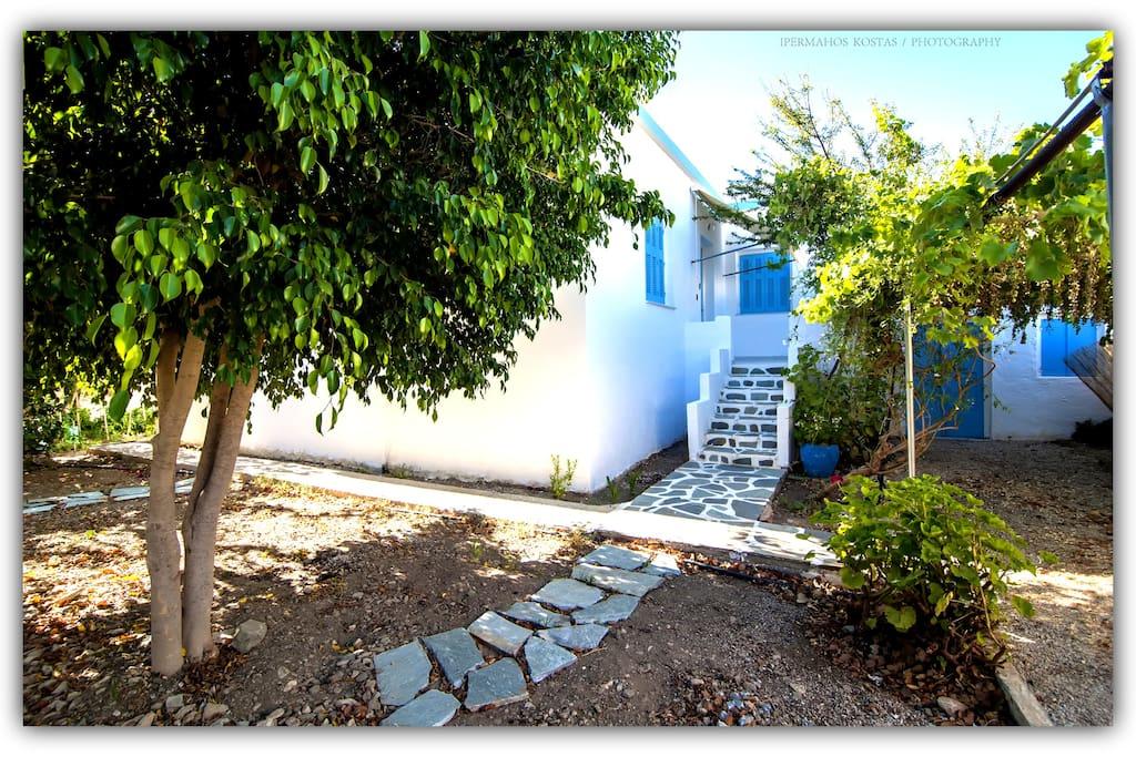 Entrance, garden view