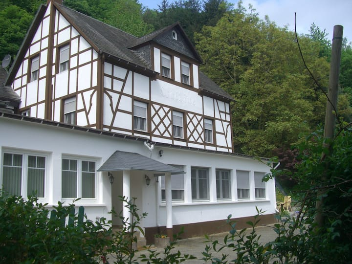 Very Spacious Holiday Home directly at Mosel