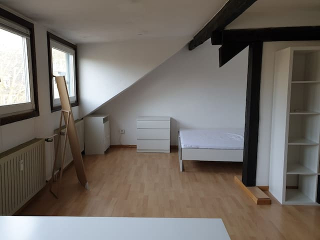 Cozy 54m^2 apartment near the city center