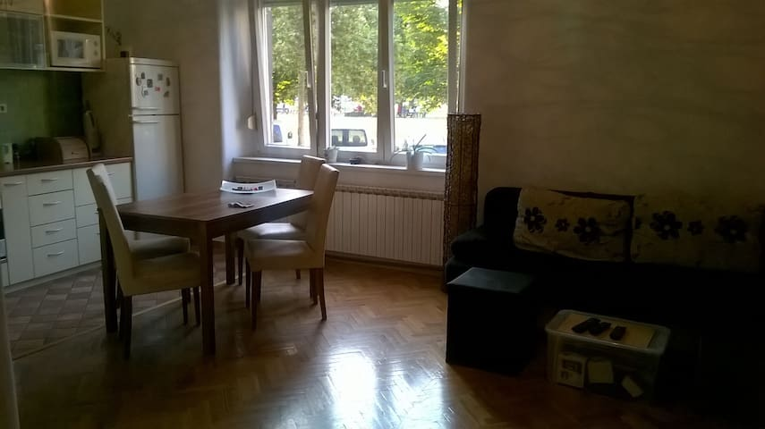Simple&comfortable, park view - Zagreb - Apartmen