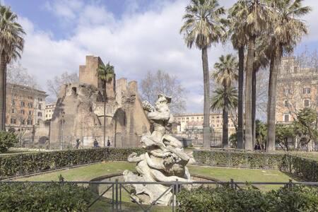 Roma nel cuore GIRASOLI