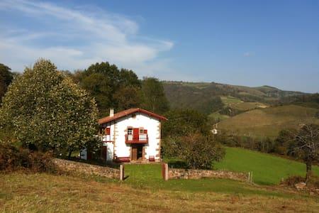 Ancienne bergerie restaurée - Ascarat - วิลล่า