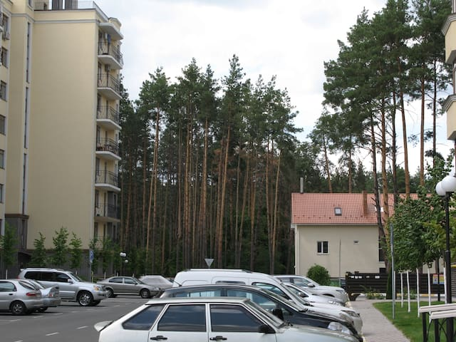 Апартаменты Киев Буча среди сосен - Bucha - Apartamento