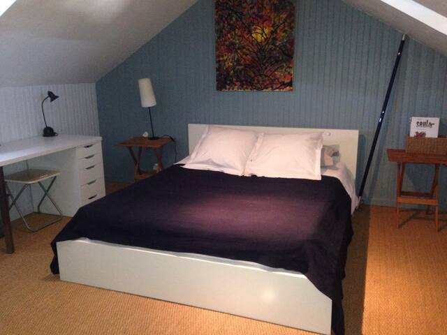 Spacieuse chambre  et SDB - Angers - Hus