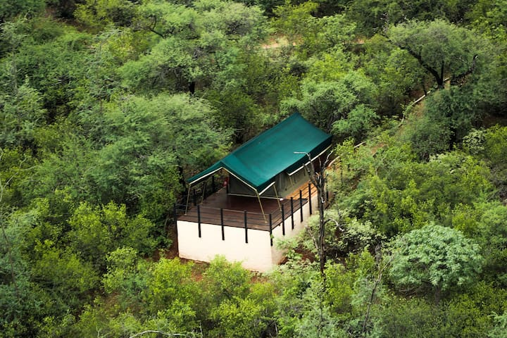Zingela Nature Reserve - Baobab Tented Camp
