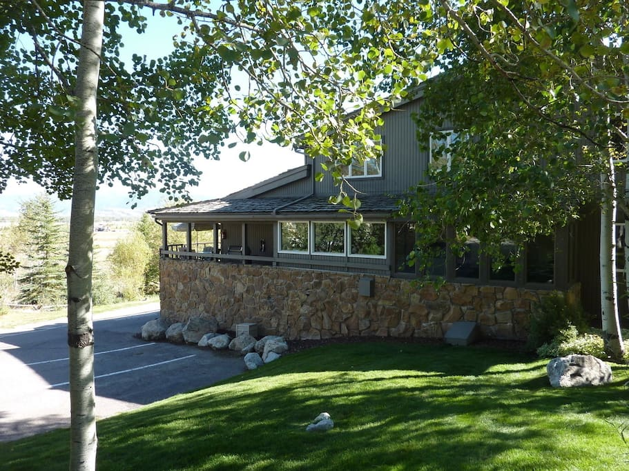 Beautiful Landscaping, Large Aspens and Evergreens