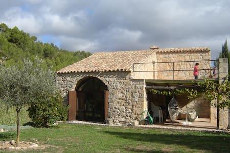 Alte Mühle in idyllischer Umgebung. - Horta de Sant Joan - Casa