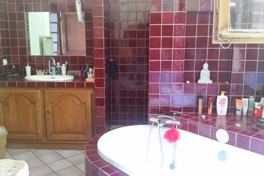 Une grande baignoire et une douche à l'italienne