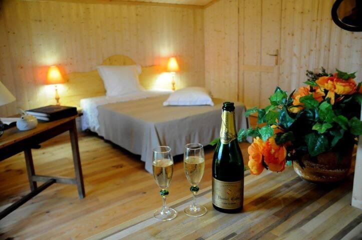MEUBLES DE TOURISME EN CHAMPAGNE