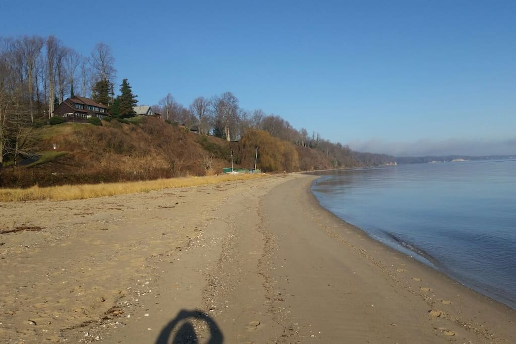 A Private Beach with Miocene Fossils that goes for miles. Safe for small children,  no current to sweep them. 5 shallow sand bars.