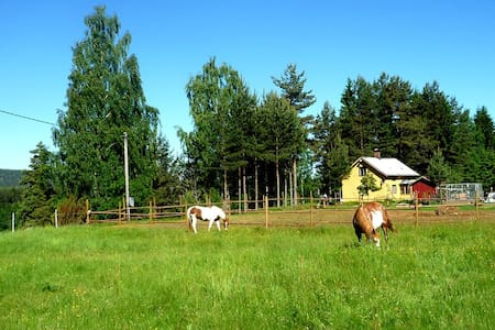 Our Little Farm