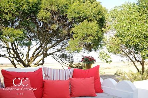 Casa do Guisado - Simplicity is the key