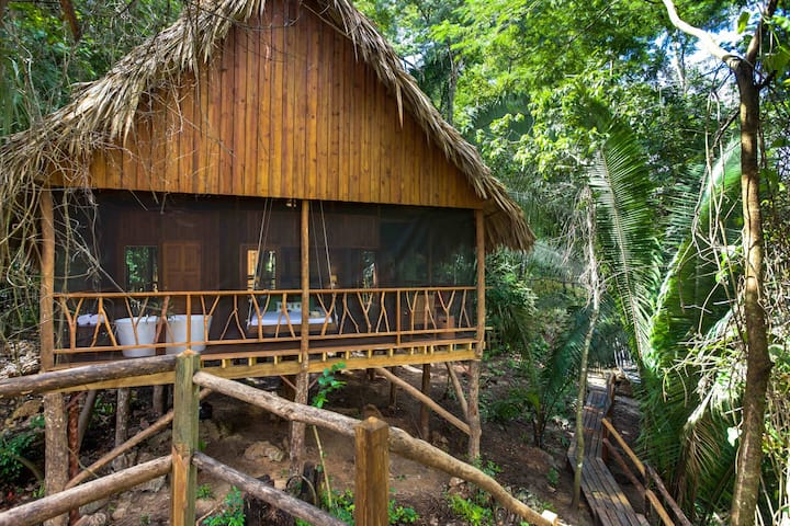 NEW Premier Treehouse in the Cayo Jungle!