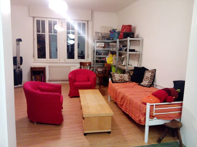 Appartement calme quartier Saint-Florent - Estrasburgo - Apartamento
