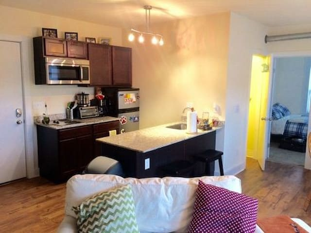 Small 1 bedroom apartment close to downtown
