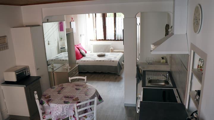 Studio 40 m², cour et jardin