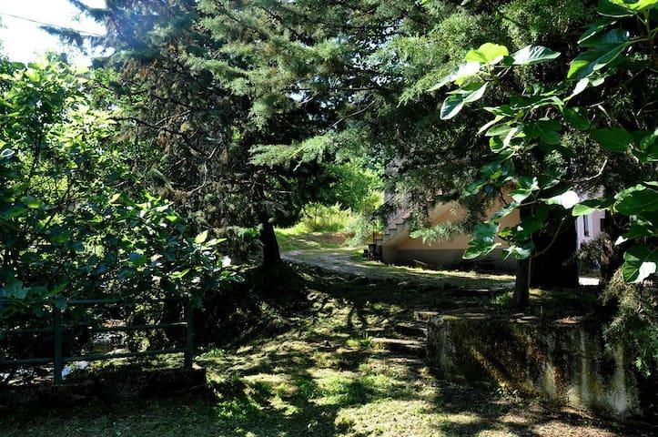 Nel Parco del Cilento - Ceraso - Гестхаус