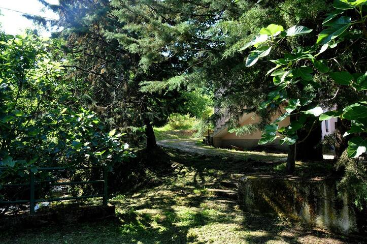 Nel Parco del Cilento - Ceraso - Oda + Kahvaltı