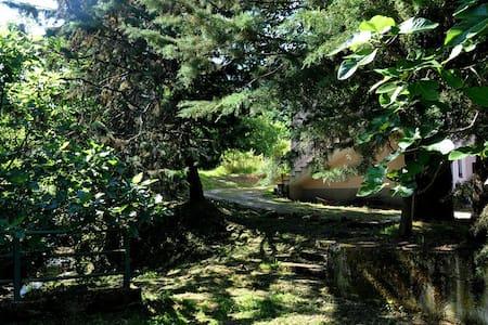 Nel Parco del Cilento - Ceraso