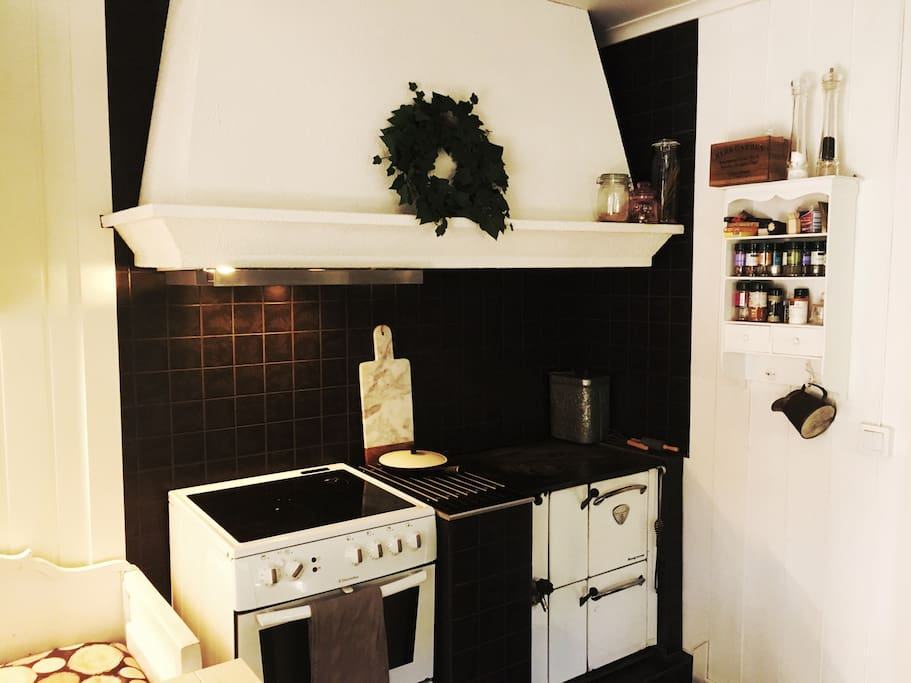 Kitchen with electric and woodfire stove