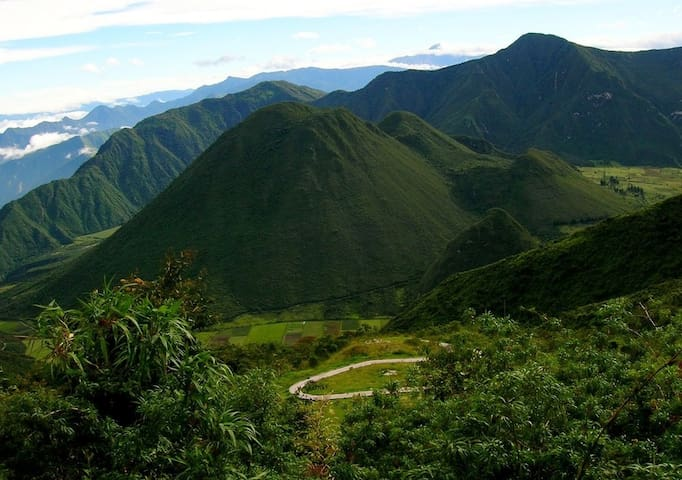 Oraganic Paridise in Pululahua
