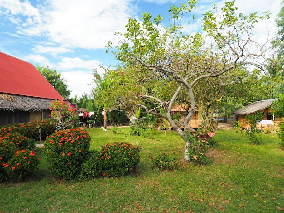bungalows, main house and garden