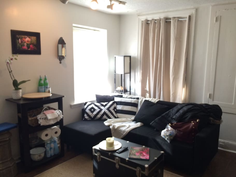 Great 1 Bedroom Apt For Pope Visit Apartments For Rent In Philadelphia Pennsylvania United