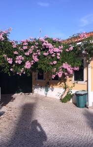 Quinta Nandi