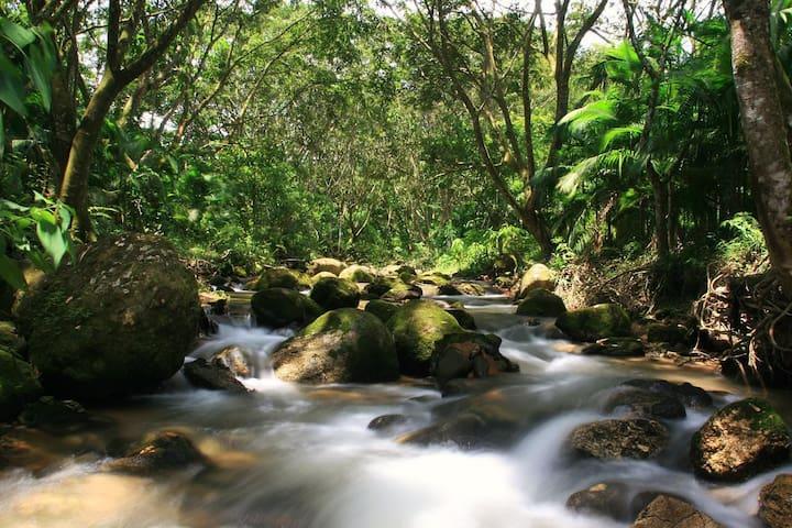 Sana - Rio de Janeiro Paradise in the countryside. - Macaé
